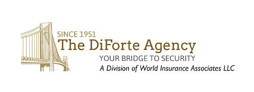 Since 1951: The DiForte Agency - Your Bridge to Security, A Division of World Insurance Associates LLC