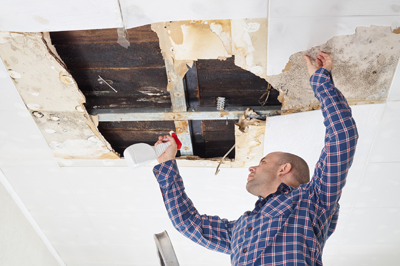 Man spraying solution on mold in a torn apart ceiling